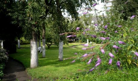 Jardin du béguinage d'Anvers