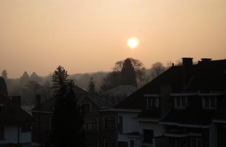 Petit matin frais sur Boitsfort