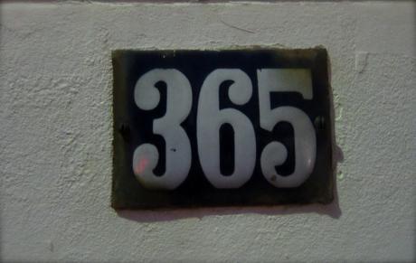 365ème photo, 1 an!