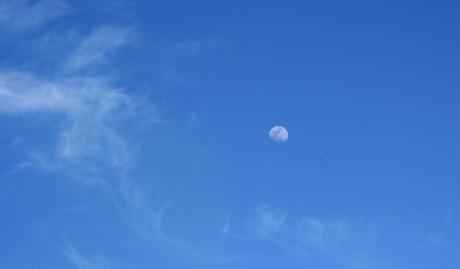 Finie la neige, clair de lune