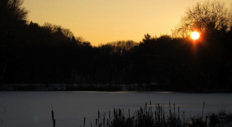 Couchant sur l'étang
