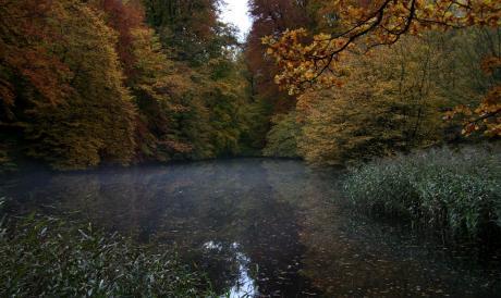 Etang d'automne et temps d'automne