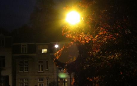 P'tit matin d'automne